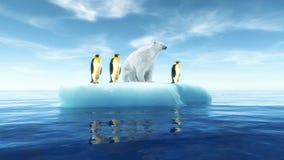 Penguins Global Warming Stock Photos