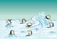 Penguins Having Fun on North Pole Stock Image