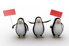 Penguins holding boards Royalty Free Stock Photo