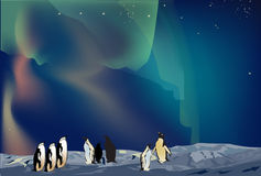 Penguins in ice desert landscape Stock Photo