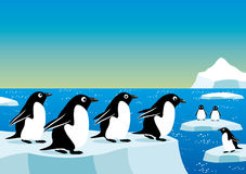 Penguins on an ice floe Stock Photo