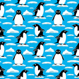 Penguins on ice floes. Stock Photos