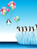 Penguins on ice and flying with balloons Stock Photos