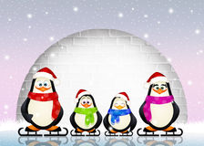Penguins on ice skates Stock Photo