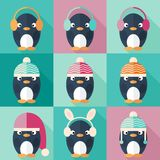 Penguins icons set in flat design Stock Photos