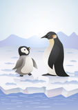 Penguins on icy landscape Stock Photos