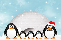 Penguins in the igloo Royalty Free Stock Image