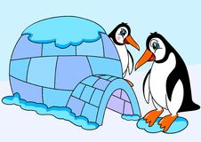 Penguins and igloos Royalty Free Stock Images