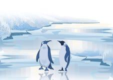 Penguins life Royalty Free Stock Image