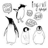 Penguins lifestyle   set. Royalty Free Stock Images