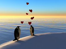 Penguins in love. Two penguins staring in love with each other Stock Photos