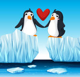 Penguins in love on ice Royalty Free Stock Photos