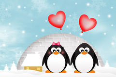 Penguins in love. Illustration of penguins in love Royalty Free Stock Image