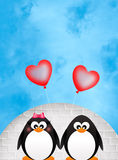 Penguins in love Stock Image