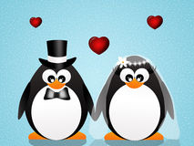 Penguins in love Stock Photo