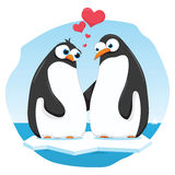 Penguins in Love Stock Images
