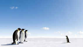 Penguins Meeting. Meeting between Emperor penguins and a Adelie penguin on frozen arctic ice Royalty Free Stock Image