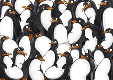 Penguins pattern Stock Images