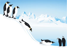 Penguins playing on ice slide Royalty Free Stock Images
