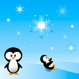 Penguins playing in Snow. Happy Penguins playing in the snow Royalty Free Stock Images