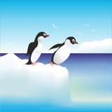 Penguins  on the rocks in Antarctica Stock Photo