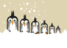 Penguins in a Row Stock Photos