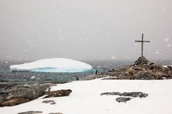 Penguins, seals and icebergs. Sombre snowy day on Petermann Isl royalty free stock image