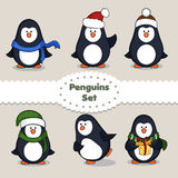 Penguins. Set. Royalty Free Stock Image