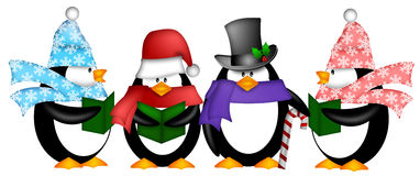 Penguins Singing Christmas Carol Cartoon Clipart. Cute Penguins Singing Carol Christmas Songs with Scarf and Hat Cartoon Illustration Stock Photo