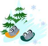 Penguins sled sliding. Baby penguins slip on sleds over snow Royalty Free Stock Image