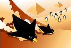 Penguins Sliding Down Sand? Global Warming? Stock Photo
