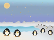 penguins standing on ice next to the sea Royalty Free Stock Photography