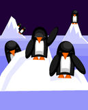 Penguins. Standing on an iceberg. Vector illustration Royalty Free Stock Photography