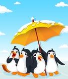Penguins standing under umbrella Royalty Free Stock Image