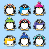 Penguins stickers Royalty Free Stock Photography