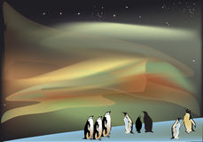 Penguins under aurora illustration Stock Images