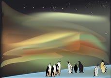Penguins under aurora illustration Stock Images