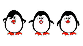 Penguins on white Stock Photo
