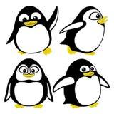 Penguins on white. Royalty Free Stock Photo