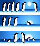Penguins, winter in Arctic Royalty Free Stock Images