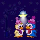 Penguins winter evening. Penguins Celebrate Holidays winter evening vector illustration