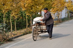 Pengzhou, Китай: Тележка велосипеда человека гуляя Стоковые Изображения