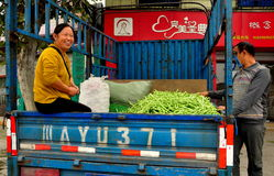 Pengzhou, China: Couple with Truck filled with Green Beans Stock Photography