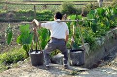 Pengzhou, China: Cubetas de água de levantamento do fazendeiro fotografia de stock royalty free