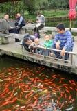 Pengzhou, China: Family and Goldfish Stock Image