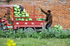 Pengzhou, China: Farmer with Cabbages Royalty Free Stock Image