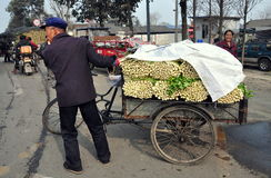 Pengzhou, China: Farmer with Cart of Celery Royalty Free Stock Photography