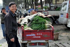 Pengzhou, China: Farmer at Market Co-op Royalty Free Stock Image