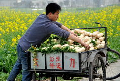 Pengzhou, China: Farmer with Radishes Royalty Free Stock Images