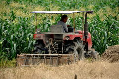 Pengzhou, China: Farmer Riding Tractor Royalty Free Stock Image